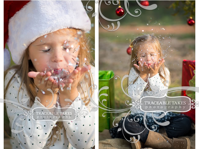 christmas-mini3