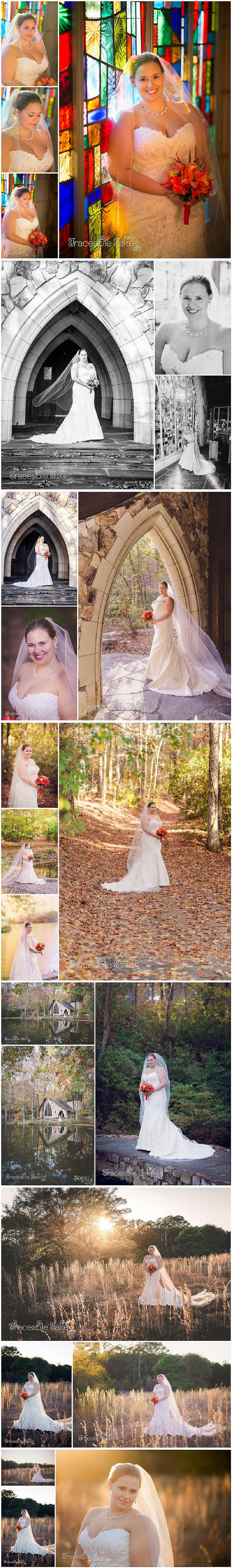 Ashley-bridal-8662_traceabletakes