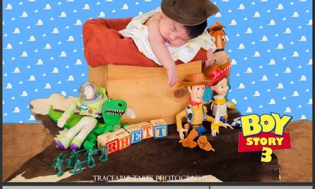 Toy Story – Boy Story
